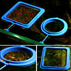 Aquarium Home DIY Square Round Fish Tank With Suction Cup Portable Feeding Ring
