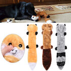 Resistant Cat Supplies Dog Chew Toys Raccoon Toy Vocalization Molars Toothbrush