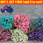 Real Dried Flower Baby Breath Gypsophila Flowers Bouquet Wedding Home Decor Au