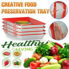 1-5X Creative Food Preservation Tray Healthy Kitchen Tools Storage Container Set