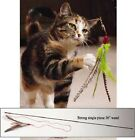 Da Bird Feather Teaser Cat Toy! choose your options