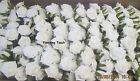 BULK BUY 120  ARTIFICIAL FOAM ROSES  WHITE OR IVORY £1.45 per bunch  5 cm