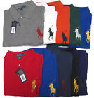 $125 Polo Ralph Lauren Mens Big Pony Logo Long Sleeve Button Mesh Shirt Sweater