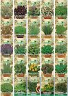 Herb Seeds 32 VARIETIES TO CHOOSE FROM (Everything you need is here) Top Quality