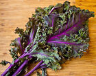Deluxe Kale Mix!!  8 different kinds of Kale!!! Great Tasting Mix!!! Free Ship!!