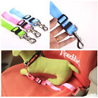 5 Colors Simply  Adjustable Pet Dogs Leashes Comfortable Seat Belt Multi Choose