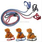 Reflective Strong Dog Cat Pet Collar Harnesses Round Leash Set 3 Colors/Sizes