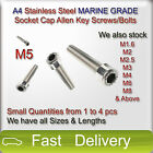 M5 A4 Stainless Steel MARINE GRADE SOCKET CAP Screws, Allen Key Bolts SMALL QTY