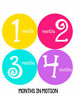 Baby Girl Monthly Baby Stickers 12 Month Age Sticker Just Born Photo #186
