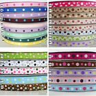 "3/8""9mm Mixed Colors Dots Theme Grosgrain RIBBON 10/100 yard Craft Hair Bow Sew"