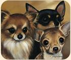 MOUSE PAD--Chihuahuas Portrait **Beautiful**