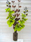 NEW SILK FLOWER ARRANGEMENT IN VASE:*LIME GREEN/BROWN* Ideal Gift