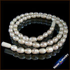 5-7mm Rice Shape Natural Gold / White Freshwater Pearls Necklace Jewelry 16.5""