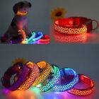 Fresh LED Dog Night Safety Pet Flashing Light Adjustable Cat Nylon Leash Collars
