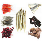 PRESERVED SEA PIER FISHING BAIT MACKEREL SQUID SANDEEL RAGWORM LUGWORM PRAWNS