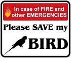 In Case of Fire Save My Bird Decals / Stickers