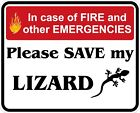 In Case of Fire Save My Lizard Decals / Stickers