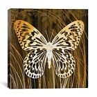 """iCanvas """"Butterflies & Leaves"""" by Erin Clark Graphic Art on Canvas"""