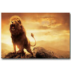 Chronicles Of Narnia Lion Aslan Animals Silk Poster 13x20 24x36 inch Sunset