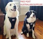 Dog Car Harness - FREE POSTAGE, sizes  XS, S, M, L and XL, FREE seat belt loop