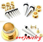 2Pairs Steel Slivery Taper Kit Stretcher + Screw Gold Tunnel Ear Expander Sets
