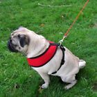 Four Paws Comfort Dog Harness Breathable Fit Mesh Material No Tug Control