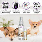 CORGI RELAX THE BLISSFUL DOG AROMATHERAPY FOR ANXIETY STRESS THUNDER FEAR TRAVEL