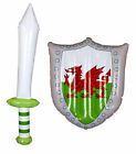 INFLATABLE SWORD AND SHIELD WELSH COUNTRY FLAG SUPPORTERS ACCESSORY BLOW UP TOY