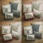 Dreams 'N' Drapes Connolly Check Stag Print 100% Brushed Cotton Filled Cushion