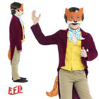 Fantastic Mr Fox World Book Day Week Roald Dahl fancy dress costume