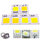 20w 30w 50w 100w Led Floodlight Cob Chip Integrated Smart Ic Driver 220v Lamp