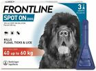 Frontline+Spot+On+Flea%2C+Tick+%26+Lice+Treatment+%28AVM-GSL%29+For+S%2CM%2CL%2CXL+Dogs+%26+Cats