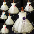 NLI7 Baby Infants Christening Baptism First Holy Communion Formal Gowns Dresses