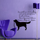Dog Wall Decals Grooming Salon Decal Vinyl Stickers Quote Dog Decor Art MN535