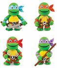 Teenage Mutant Ninja Turtles TMNT Make Your Own Dough Kit Creative Gift