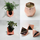 Rose Gold Glazed Plating Ceramic Plant Pot Flower box Gloss Planter Garden Decor