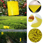 1/5/10PCS Sticky Glue Yellow Papers Flying Pest Insect Traps Aphid Catchers Bugs