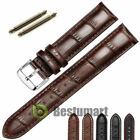 Men's Genuine Leather Watch Strap Band Croco RM S.Steel Buckle and Spring Bars