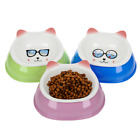 New Pet Cat Dog Cute Japanese Style Food Water Bowl Puppy Detachable Dish Feeder
