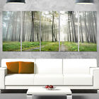 Designart 'Footpath in Foggy Forest at Sunset' Modern Forest Glossy Metal Wall