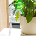 1PC Automatic Self Watering Device Waterer Houseplant Plant Pot Garden Bulb tool