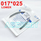 All size Dental Orthodontic Arch Wires Super Elastic NITI Rectangular Ovoid Form