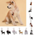 1x Key Chain Dog Puppy Collar Tag Pet Metal Necklace Pendant Keychain Toy Cute