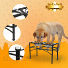 Double Elevated Raised Dog Pet Feeder Bowl Food Water Stand Tray Stainless Steel