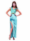 Women Long Blue Princess Dress Evening Gown for Wedding Party Cosplay