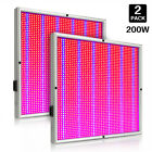 200W LED Grow Light Full Spectrum for Indoor Hydro Veg Flower Grow Panel Lamp UK