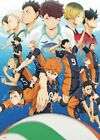 Japanese Anime Haikyuu Haikyuu!! Poster Group High Grade Glossy Laminated