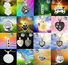 New Paw Dog Cat Pet Urn Cremation Pendant Ashes Silver Memorial Necklace