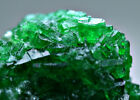 35 CT Full Terminated Top Green Swat Emerald Crystals Cluster Bunch@Swat Pakistn