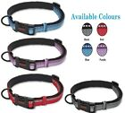 HALTI Premium Reflective Dog Collar Sizes X-Small, Small, Medium, Large .......